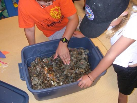 School Composting