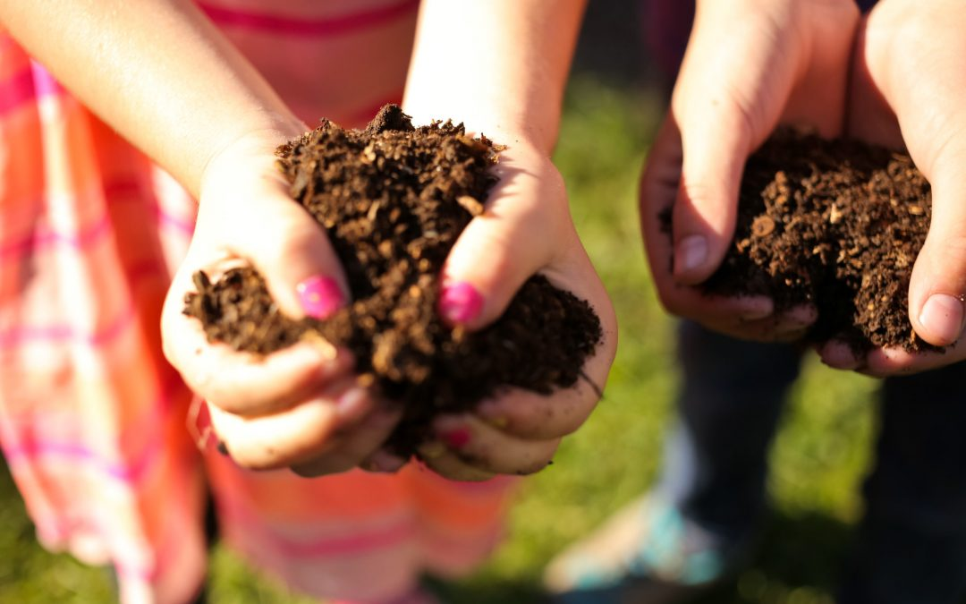 Harvesting & Using Your Compost