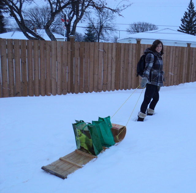 Green Action Centre's Top 10: Winter Eco-Actions