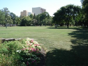 Manitoba's Legislative Gardens have been kept beautiful pesticide free for several years. Photo: Green Action Centre