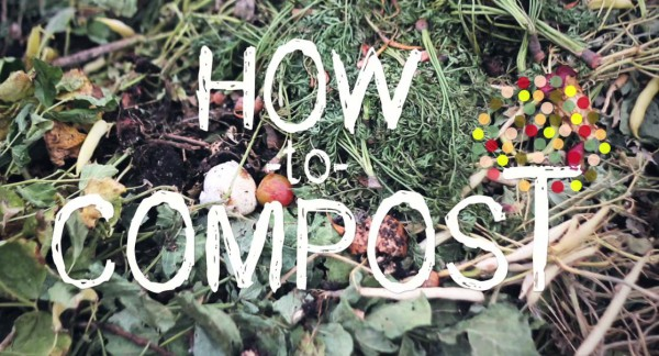 How to Compost Video