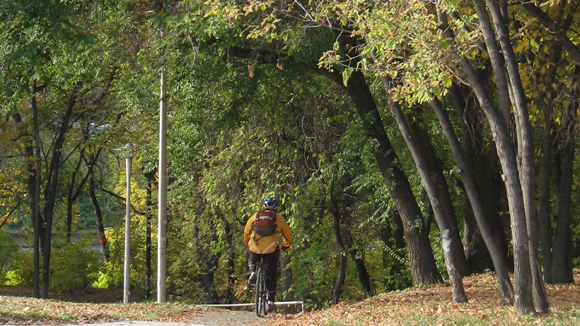 Cycle through the fall or put your bike away?