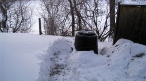 Path to compost bin in winter (Main Pg)