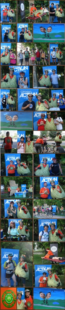 BTWD 2013 pit stop collage