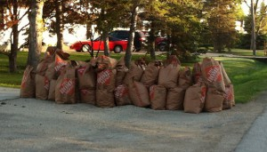Bags of yard waste - leaves