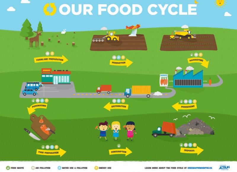food-cycle