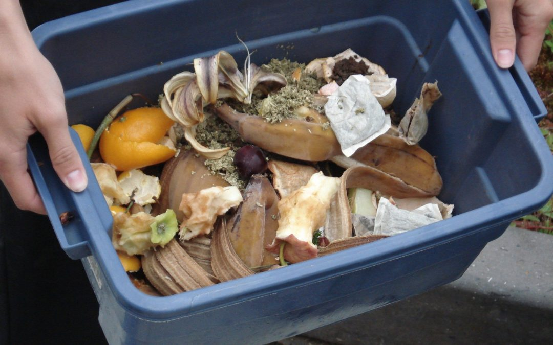 Apply to Be a Master Composter