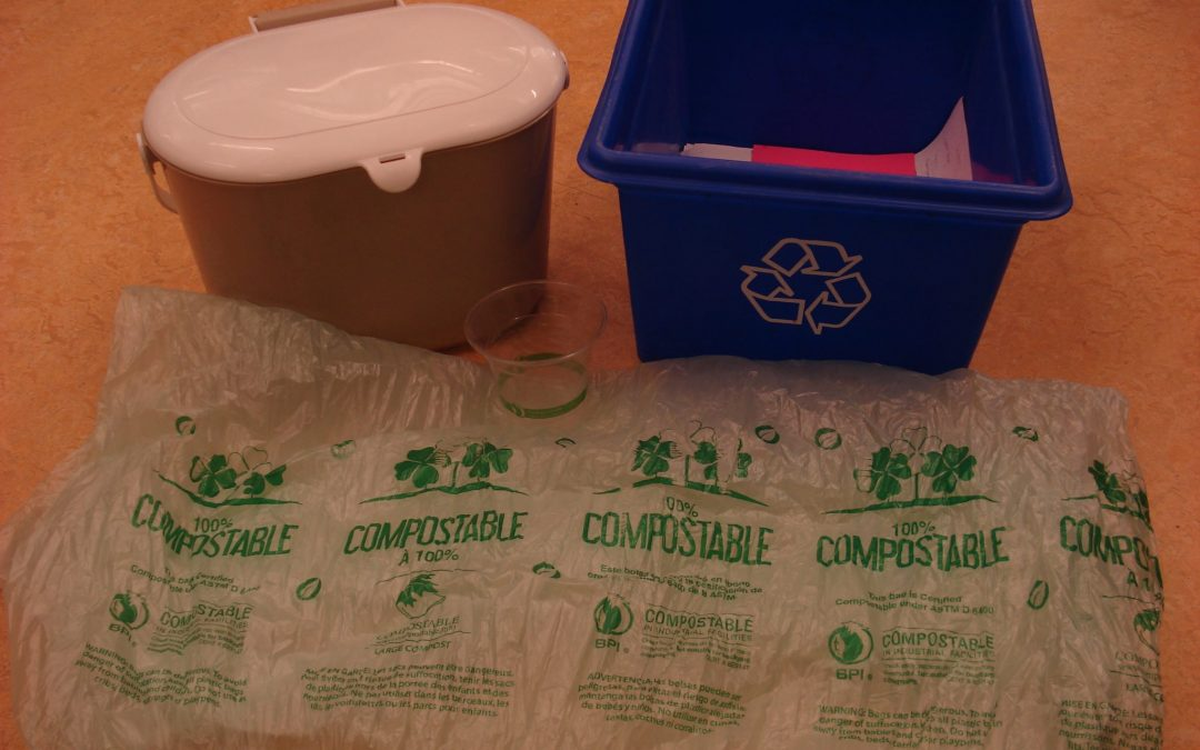 Are Compostable Containers Worth It?