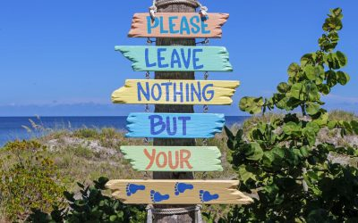 Greening Your Trip to the Beach