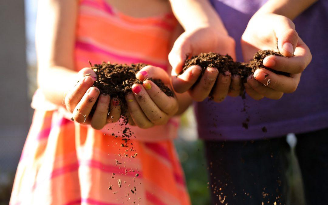 School Composting Tips
