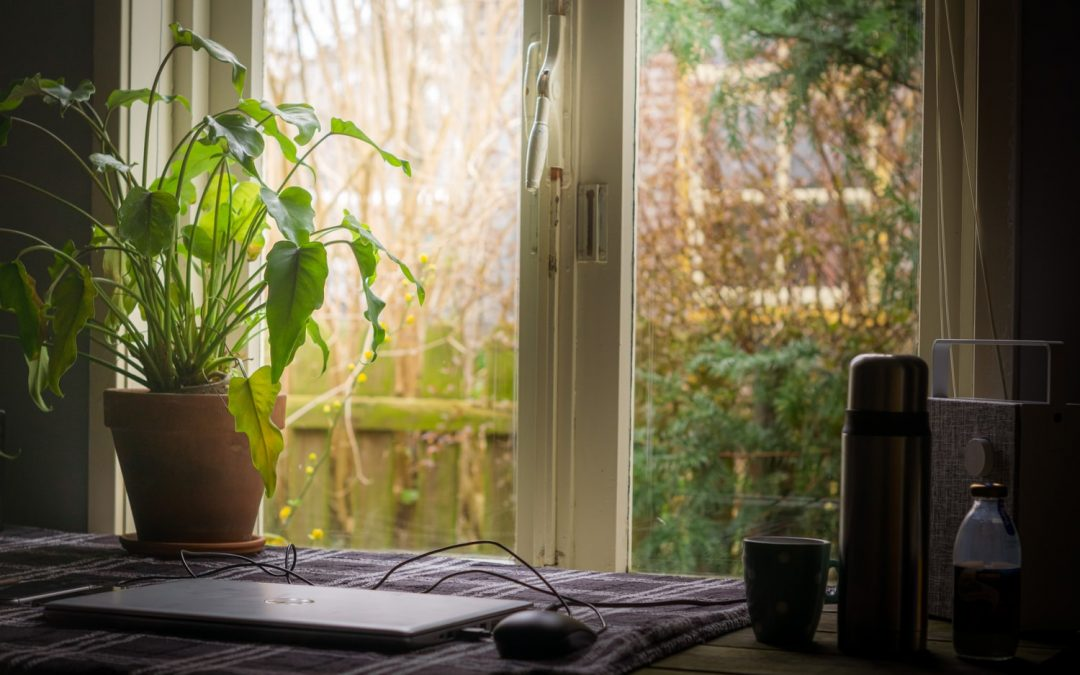 How to be Green While Working from Home