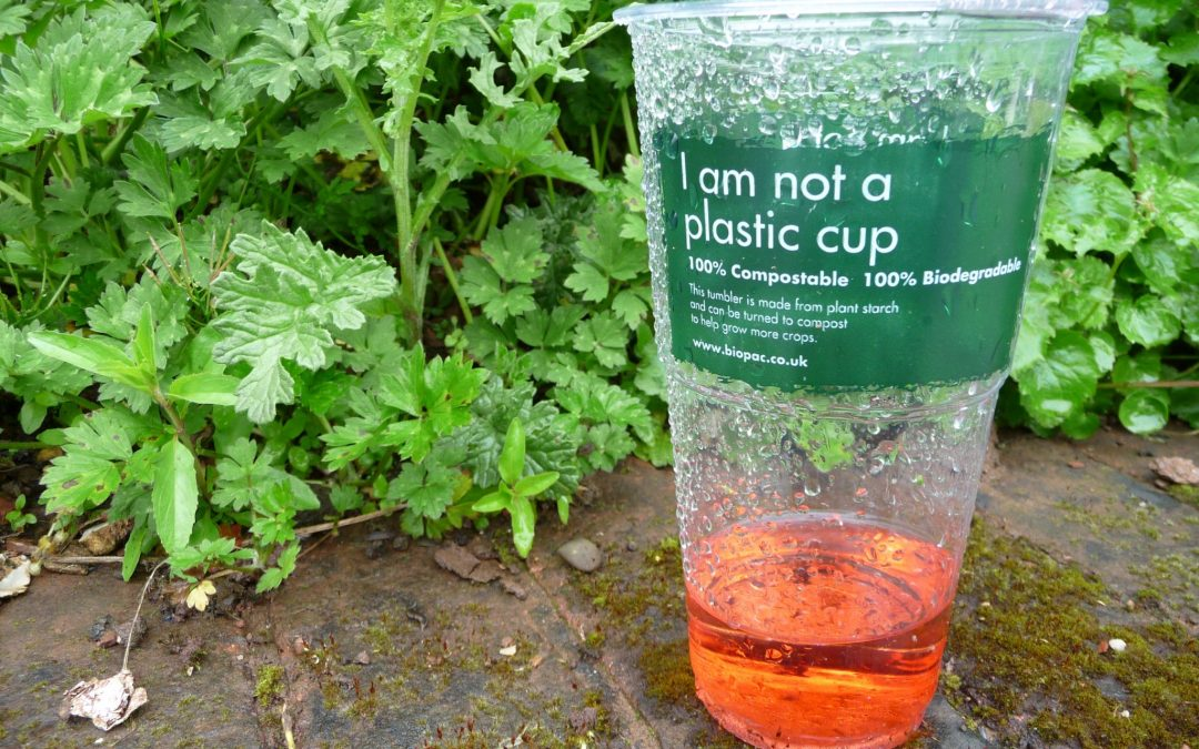 Compostable Packaging Demystified