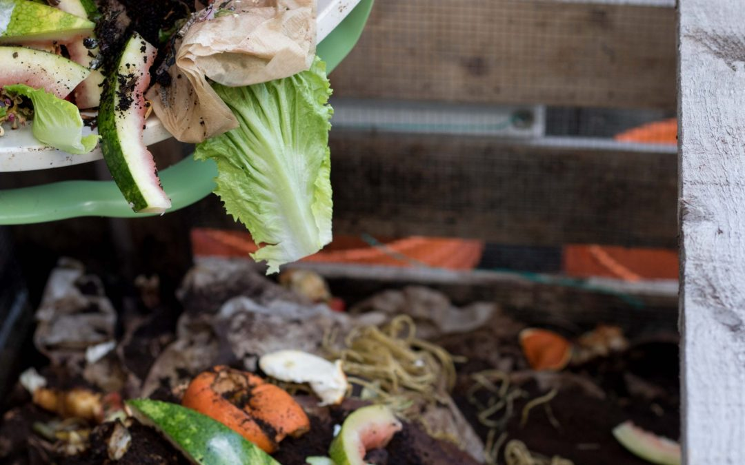 Waste Not, Want Not: How COVID-19 is Affecting Food Waste in Canada