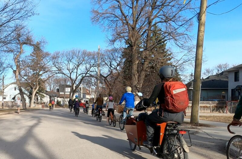 a group of families bike together down the road. They meet a person running and other people biking in the opposite direction.